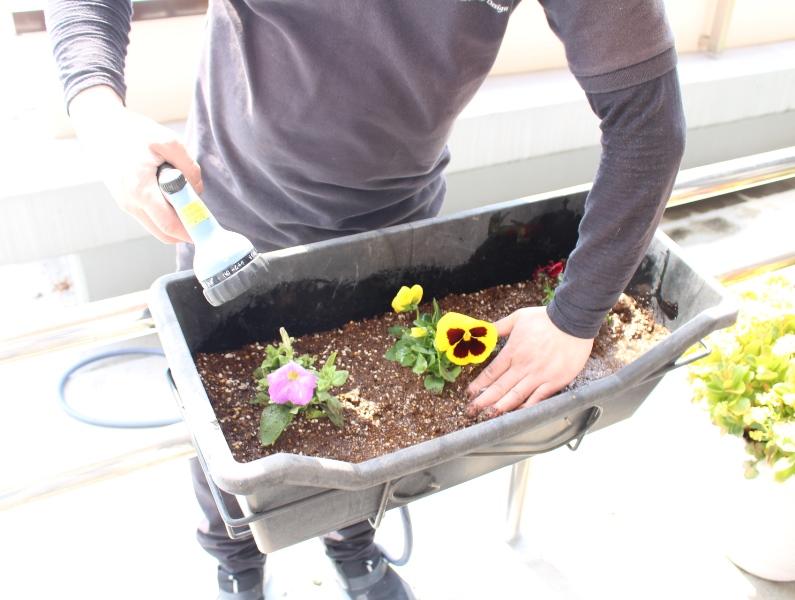 介護老人保健施設オアシス デイケア・ロング お花の入れ替えをしました5