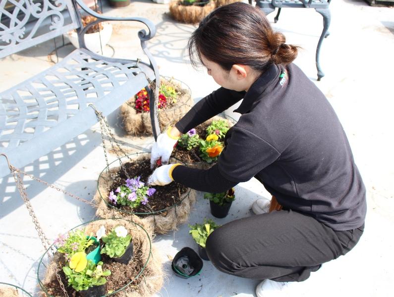 介護老人保健施設オアシス デイケア・ロング お花の入れ替えをしました4