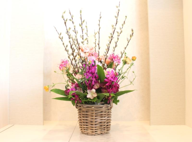 木下内科クリニックの生け花(弥生の壱」):「春風」1
