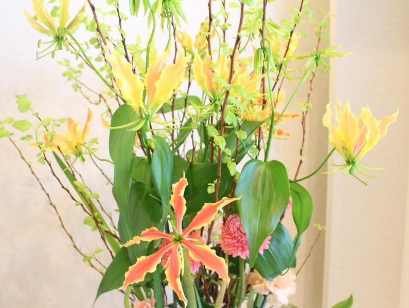 木下内科クリニックの生け花(弥生の弐」):「朝日」3