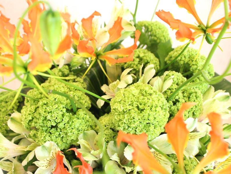 木下内科クリニックの生け花が新しくなりました「春うらら 」3